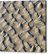 Ripple Pattern On Mudflat At Low Tide Canvas Print