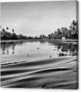 Ripples On The Saltwater Lagoon Canvas Print