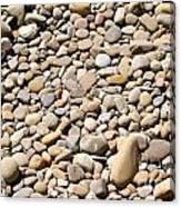 River Rocks Pebbles Canvas Print