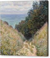 Road At La Cavee Canvas Print