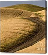 Road Through Wheat Field Canvas Print