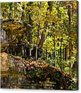 Rock Shelf And Forest Canvas Print