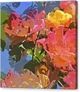 Rose 208 Canvas Print