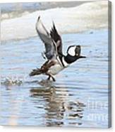 Running On The Water Canvas Print