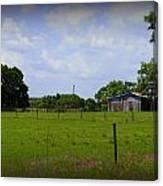 Rural Florida Canvas Print