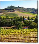 Rural Landscape Canvas Print