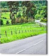 Rural Road Canvas Print