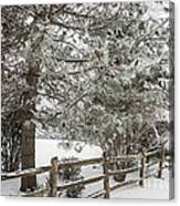 Rural Winter Scene With Fence Canvas Print