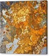 Rust Never Sleeps Canvas Print
