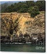 Salt Point Cliffs Canvas Print