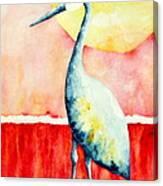 Sandhill Crane II Canvas Print