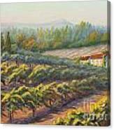 School House Vineyard Canvas Print