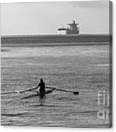 Sculling On The Bay Canvas Print