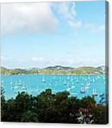 Sea Of Sailboats Canvas Print