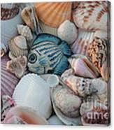 Seashells And Blue Fish Canvas Print