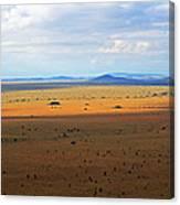 Serengeti Landscape Canvas Print