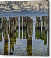 Shore Pilings At Fayette State Park Canvas Print
