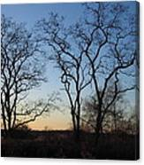 Silhouette At Rye Lake Canvas Print