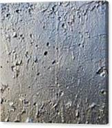 Silver Paint Texture Canvas Print