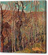 Silvery Tangle Canvas Print