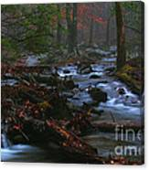Smoky Mountain Color Canvas Print