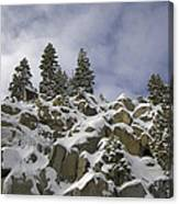 Snow Covered Cliffs And Trees Canvas Print