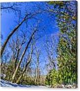 Snow Covered Road Leads Through The Wooded Forest Canvas Print