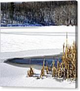 Snow On Lake Canvas Print