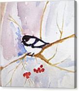 Snowbird Canvas Print