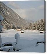 Snowed Under Canvas Print