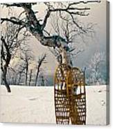 Snowshoes Leaning Against Birch Tree Snowscape Canvas Print