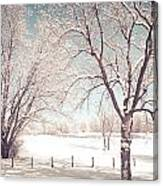 Snowy Trees On The Erie Canal Canvas Print