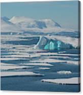 South Of The Antarctic Circle Canvas Print