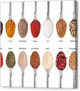Spices Collection On Spoons Canvas Print