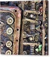 Spinal Column Canvas Print