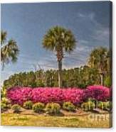 Spring Time In Charleston Canvas Print