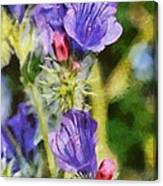 Spring Wild Flower Canvas Print