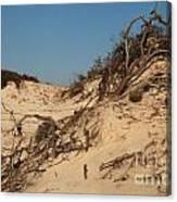 St Joseph Sand Dunes Canvas Print