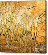 Stalactite Formations In Florida Canvas Print