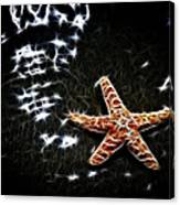 Star Fish Canvas Print