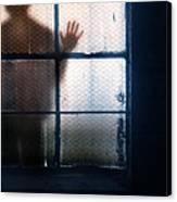 Stranger At The Window Canvas Print