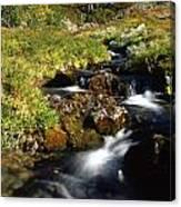Stream In Mountain Canvas Print