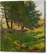 Summer Near Beaupre Canvas Print