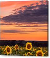 Sun Over Sun Canvas Print