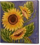 Sunflower Burst 1 Canvas Print