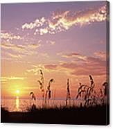 Sunset Over The Sea, Venice Beach Canvas Print