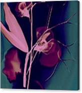 Sweetpea In The Pink Canvas Print