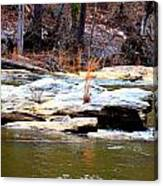 Sweetwater Creek Canvas Print