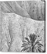 Tabernas Desert Canvas Print