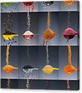 1 Tablespoon Flavor Collage Canvas Print